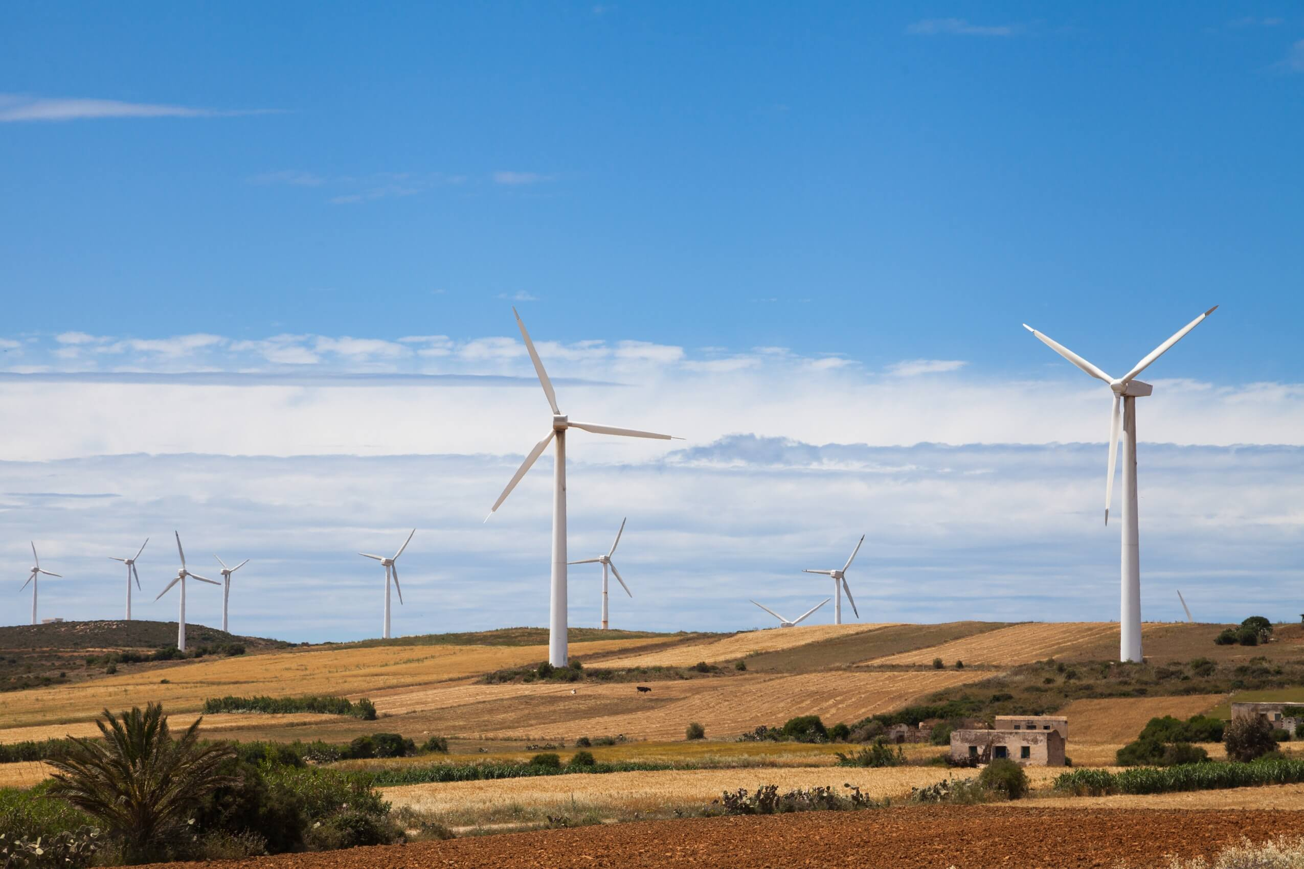 Fiberglass composite wind turbines in a field
